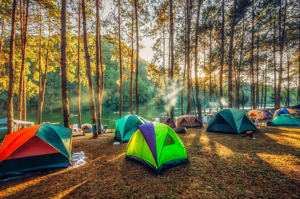 Thirsty for Travel, Hungry for Nature: A Road to Eco-friendly Trip